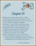 Job Chapter 29