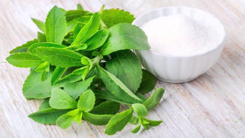 stevia-dolcificante-semi-pianta