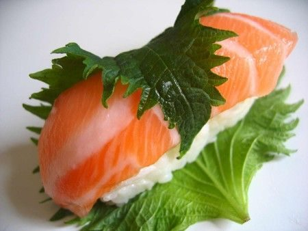 shiso sushi wiseconomy