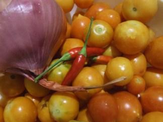 semi pomodori gialli appendere
