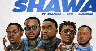 DJ Neptune x Larry Gaaga ft. Olamide, CDQ & Slimcase – Shawa Shawa