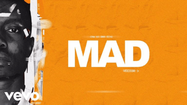 Video: Vector - Mad