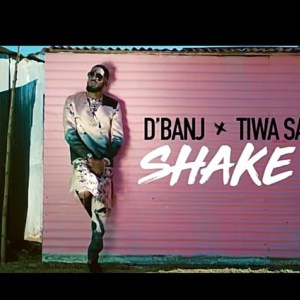 Video: D'Banj ft. Tiwa Savage – Shake It