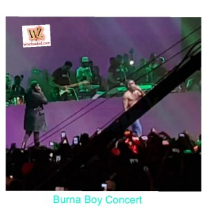 DBanj & 2Baba Join Burna Boy On Stage At Burna Boy's Concert (Watch Video)
