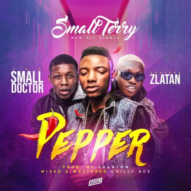 Small Terry ft Zlatan & Small Doctor - Pepper