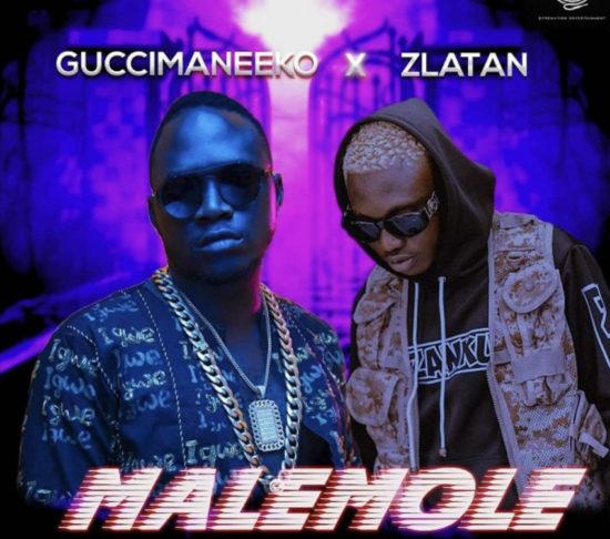 Guccimaneeko ft Zlatan - Malemole