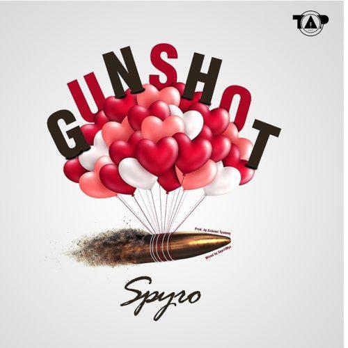 Spyro - Gunshot