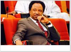 Shehu Sanni Reacts To The Arrest Of 80 Nigerians By FBI