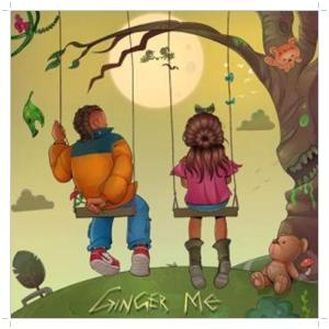 Rema's new music titled Ginger Me