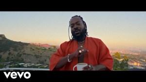 Adekunle Gold - Okay Video