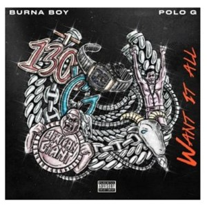 Burna Boy ft. Polo G - Want It All Mp3 Download