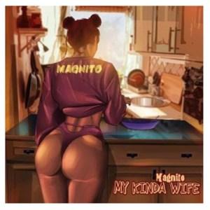 Magnito - My Kinda Wife