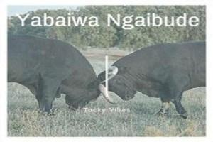 Tocky Vibes - Yabaiwa Ngaabude