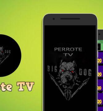 descargar Perrote TV apk