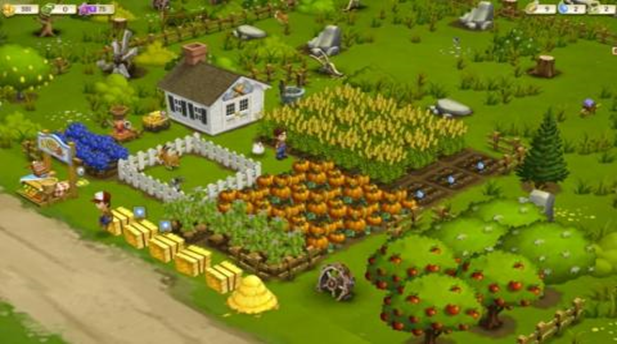 The FarmVille game