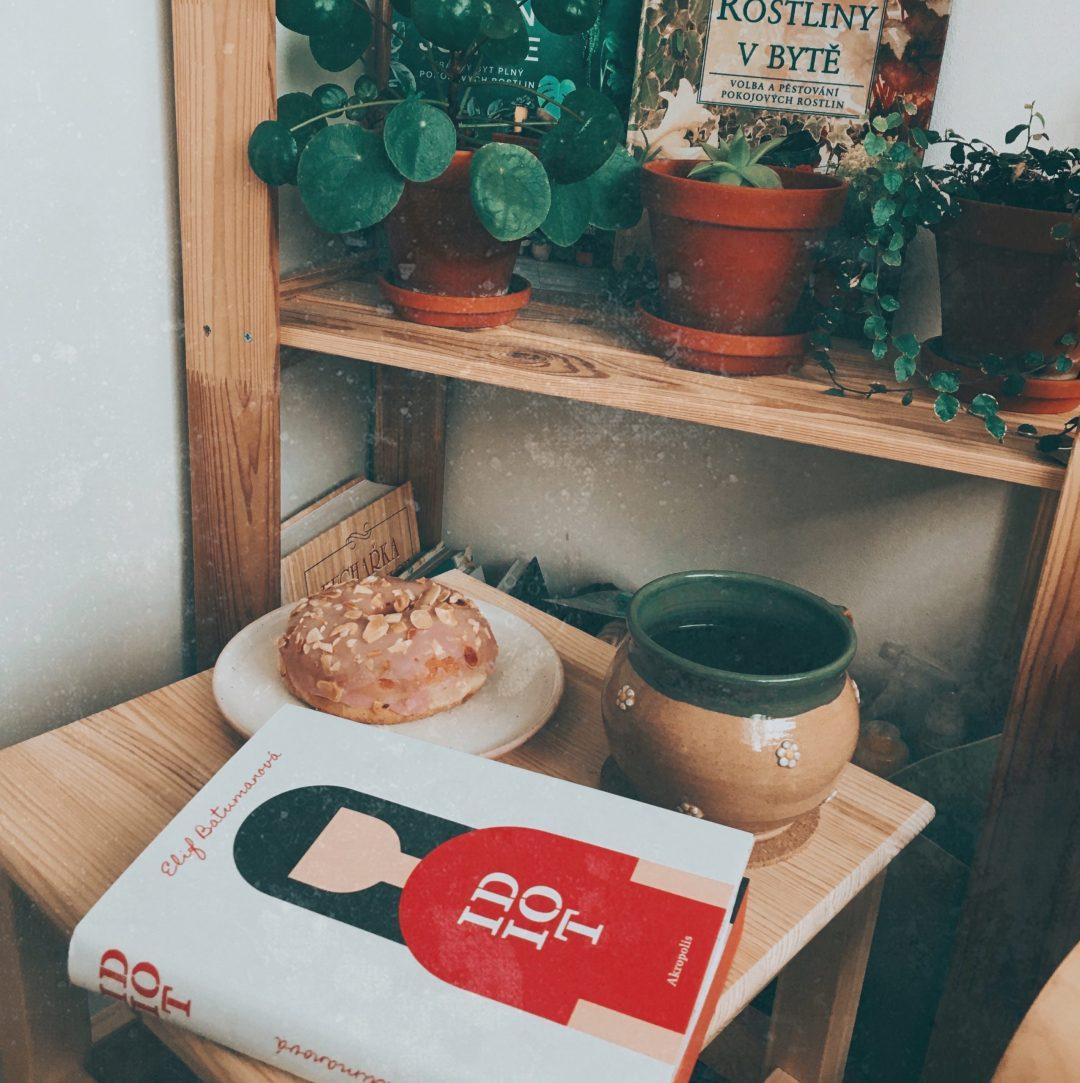 pokojovky, donut a kniha