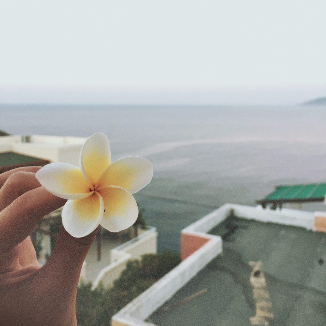 květ a moře