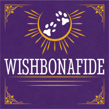 Wishbonafide Cover Art