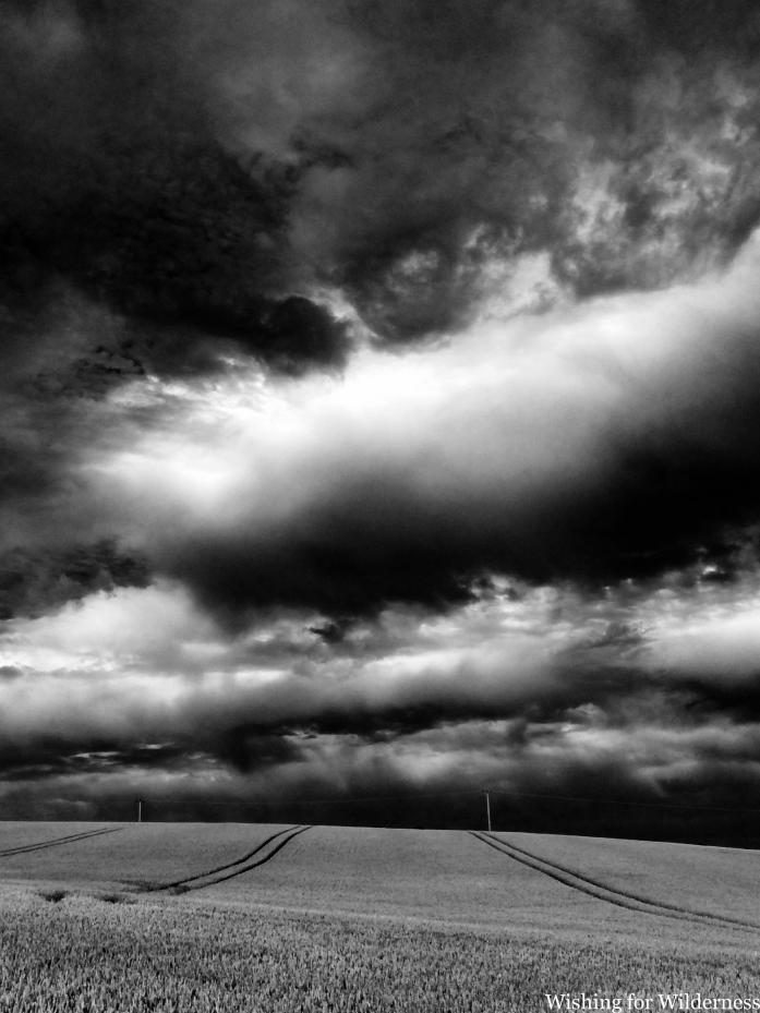 Stormy fields at Home