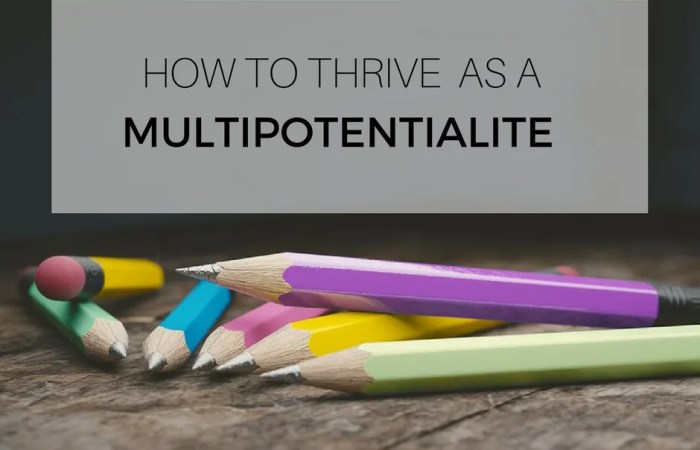 How To Thrive As A Multipotentialite