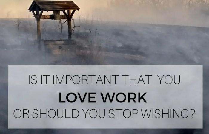 Is It Important That You Love Work Or Should You Stop Wishing?