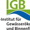 Wasserkraft: Das Sterberisiko für Fische an Turbinen bewerten