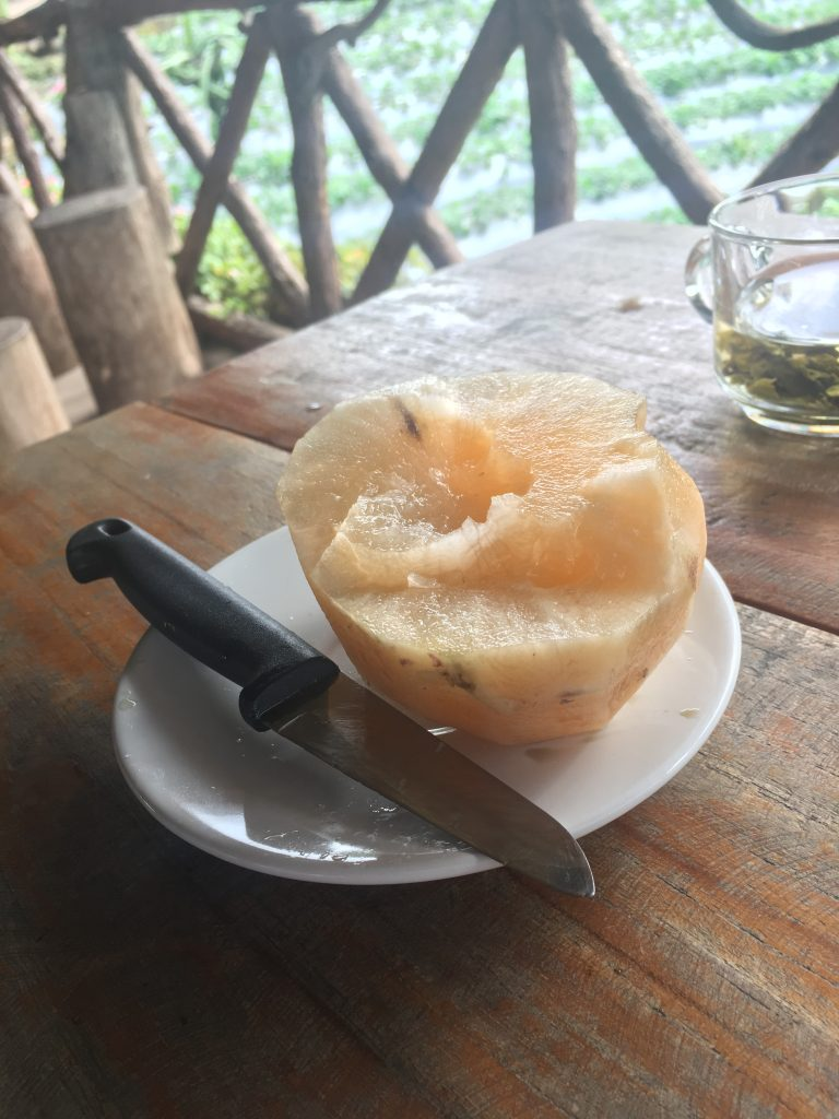 New fruit that I tried with my guide in Chiang Mai, Thailand. It resembles a melon and was quite juicy, but I do not know the English name.
