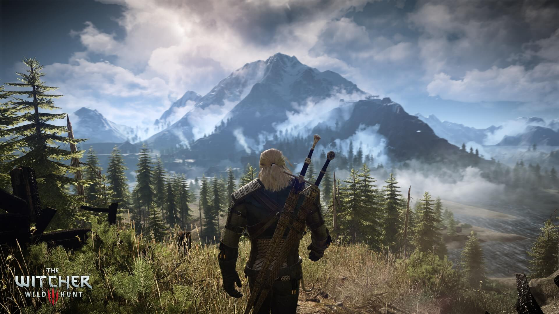 The Witcher 3: Wild Hunt Forest Environment Screenshot