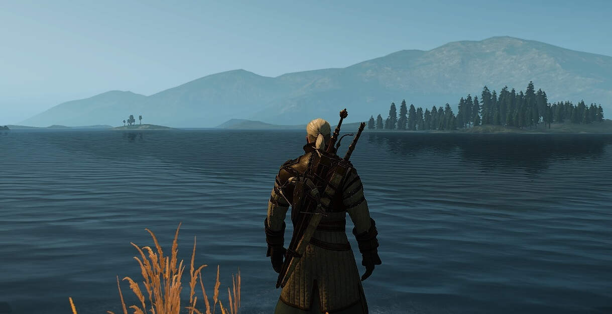 Vendor Locations That Sell Maps For Witcher Gear Bear Cat Griffin Wolf Witcher Hour