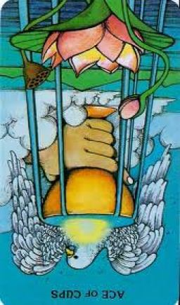 ace-of-cups-reversed