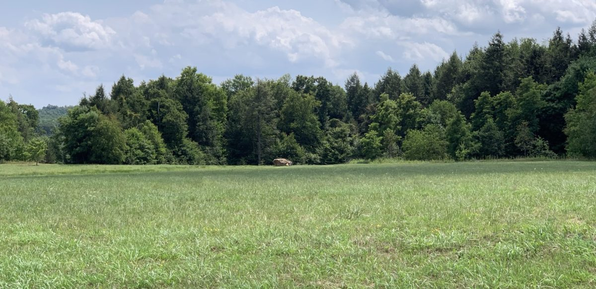 Flight 93's impact site