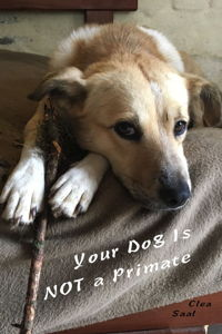 Your Dog Is NOT a Primate