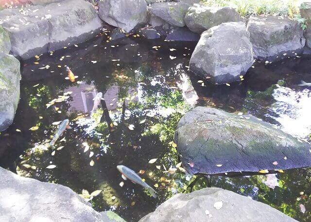 三鷹市山本有三記念館 有三記念公園