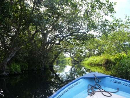 River Tour of San Blas