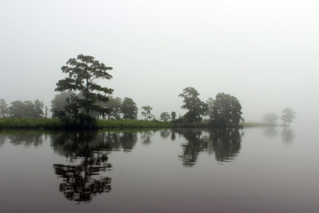 Foggy morning on the intracoastal - South Carolina