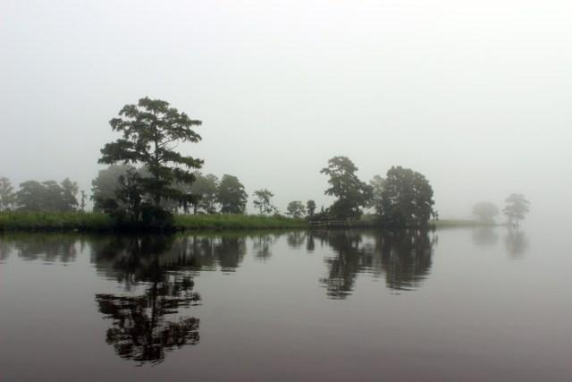 Foggy morning on the intracoastal - South Carolina