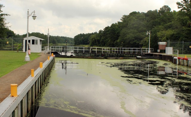 The Great Dismal Swamp - Lock Down