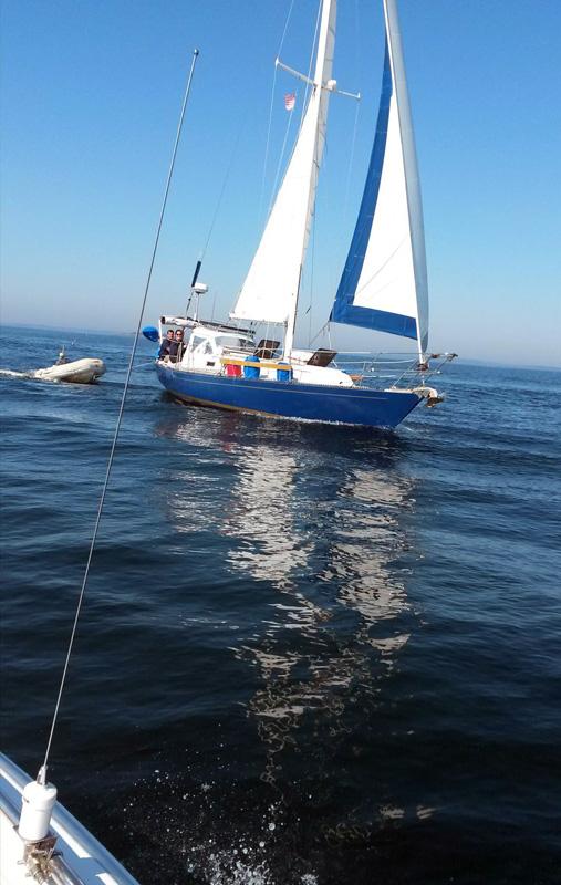 Brio sailing to Damariscove