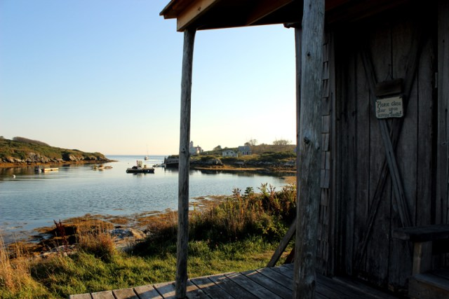 View from the museum on Damariscove