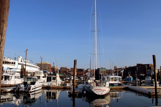 Living aboard in Portland, Maine at DiMillos Marina