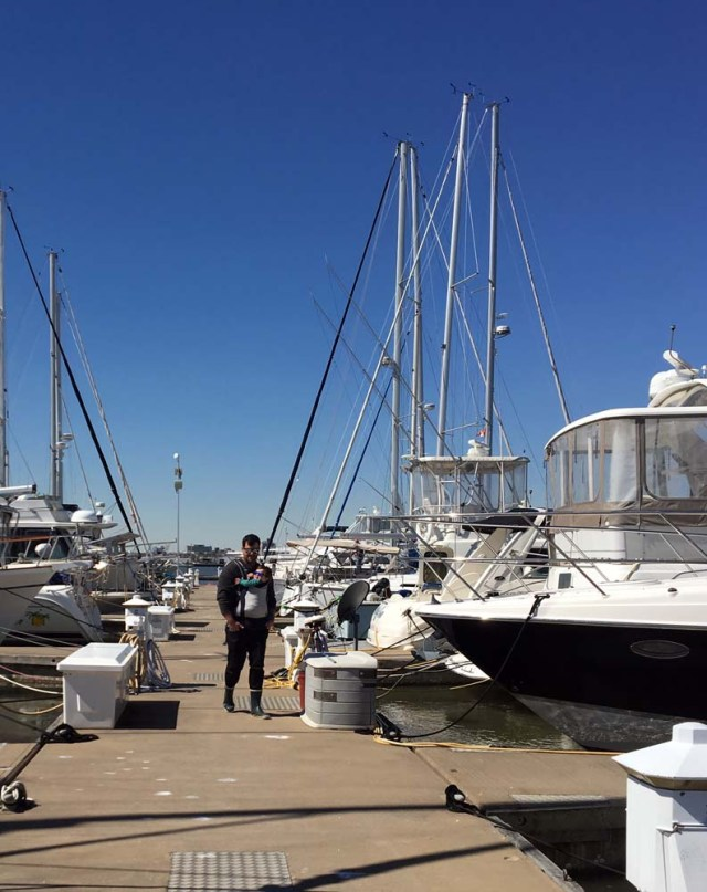Charleston Harbor Marina - cute boys