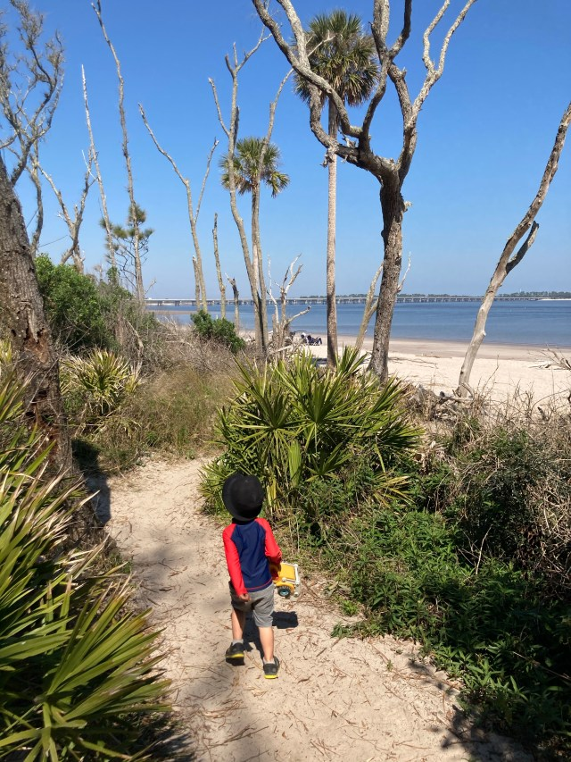 Boneyard Beach in Big Talbot Island Park