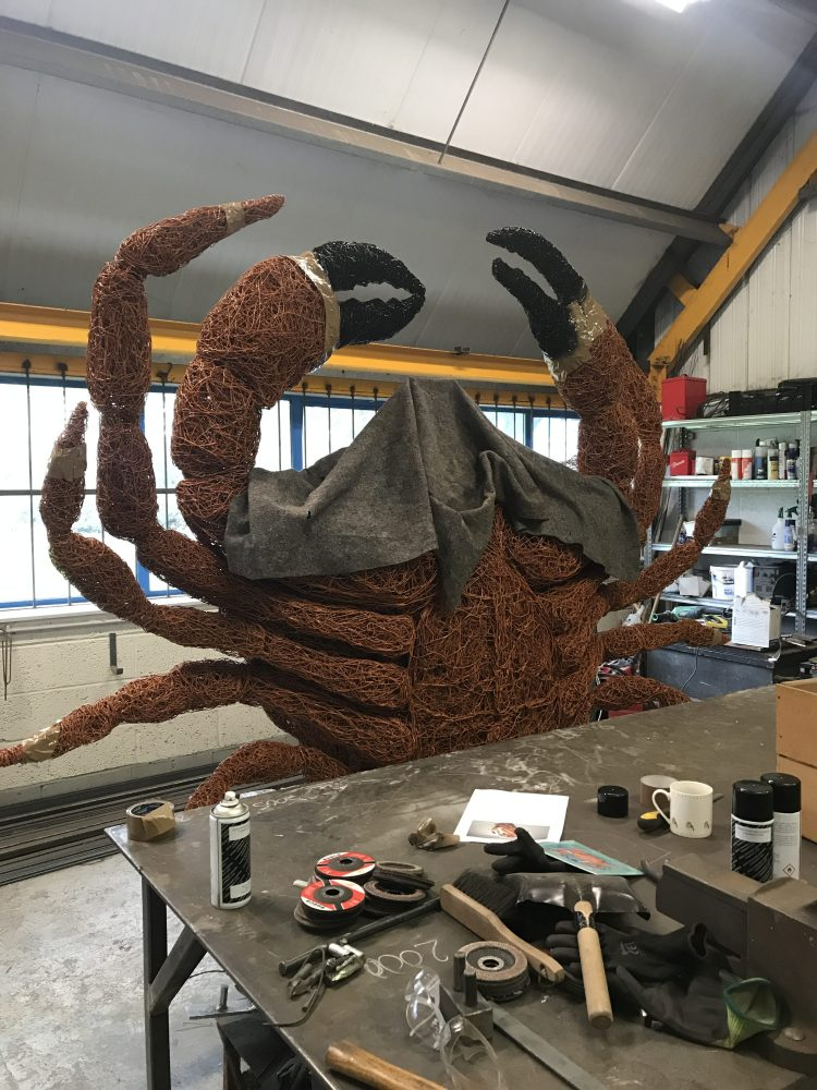 Crab in the workshop
