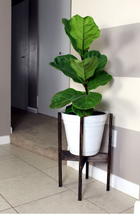 DIY Mid century plant stand