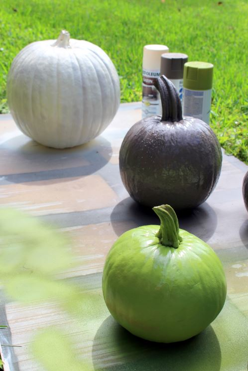 Spray painting two coats on the pumpkins