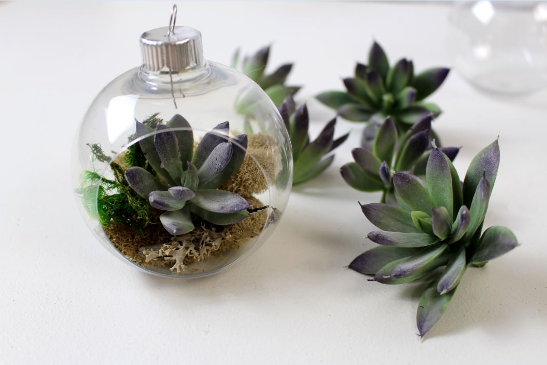 Placing succulents inside an ornament