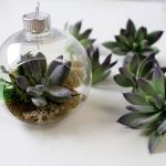 Succulent Ornament