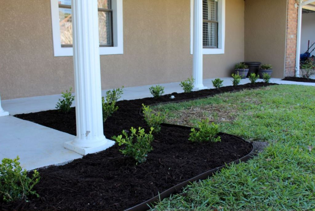 Using boxwoods to line the front porch area
