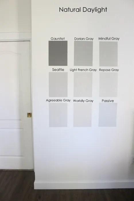 Nine gray paint colors we put to the test for your home for Light gray color swatch