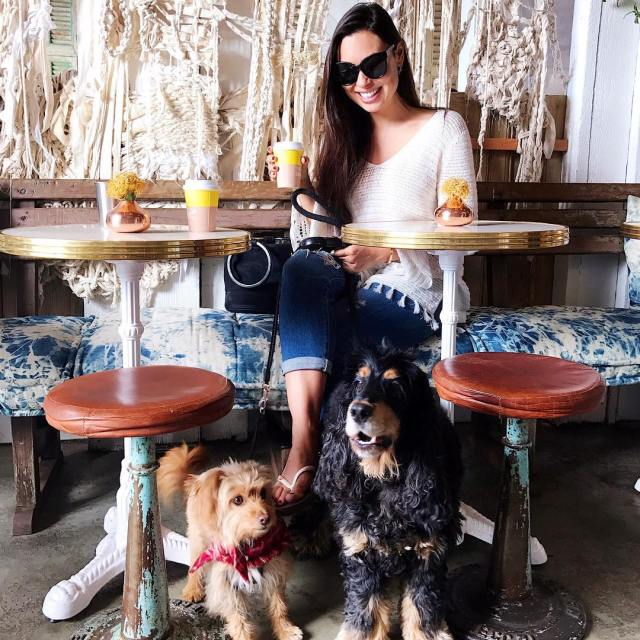 Saturday morning matcha date with these cuties Puppy play dateshellip